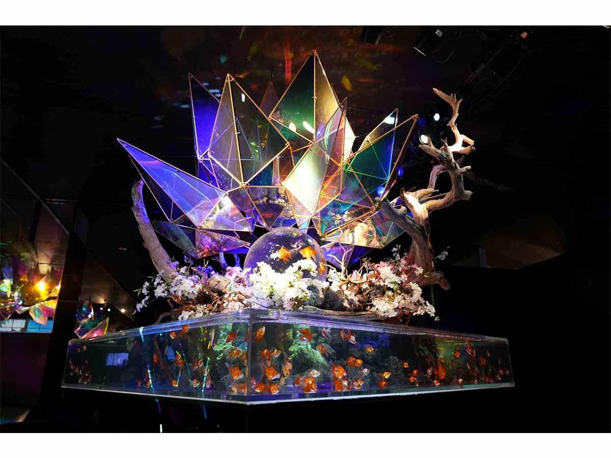 西日本最大級!金魚エンタメ・アクアリウム空間「金魚ミュージアム」リニューアルオープン