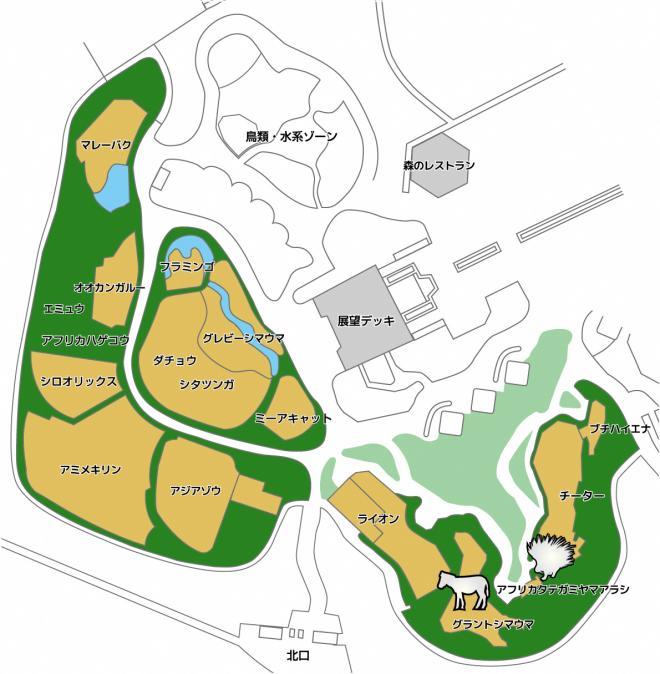 千葉市動物公園 平原ゾーンフルオープン